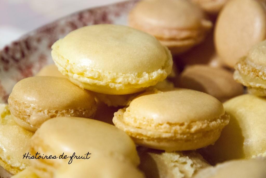 Noël 2012 - Macarons citron et macarons framboise
