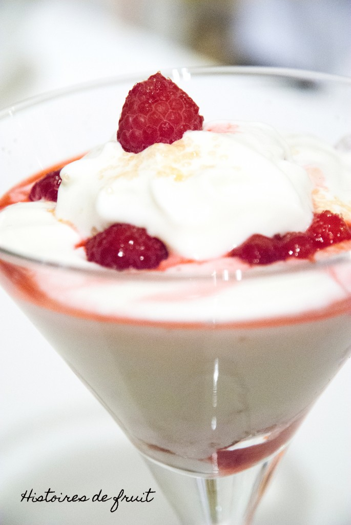 Mousse de fromage blanc aux fruits rouges