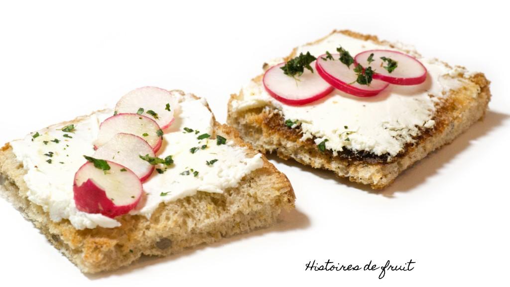 Toast radis, fromage frais et menthe
